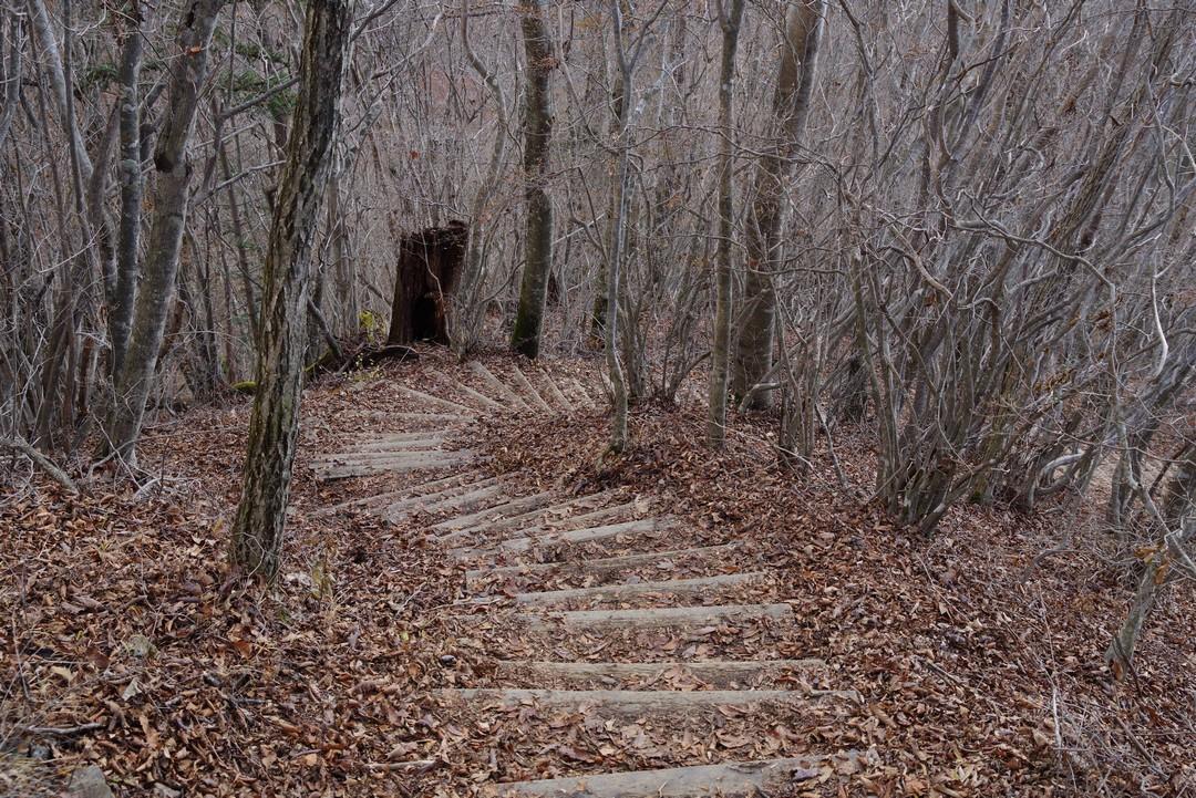 三頭山 山頂直下の階段