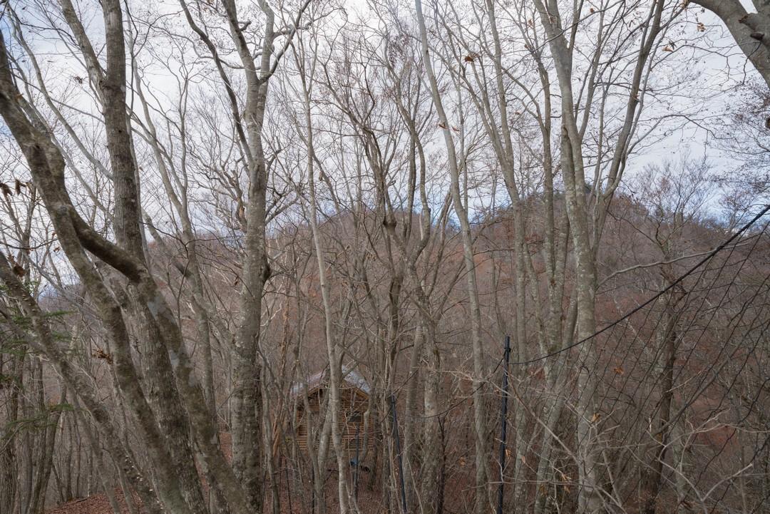 避難小屋から見た三頭山山頂