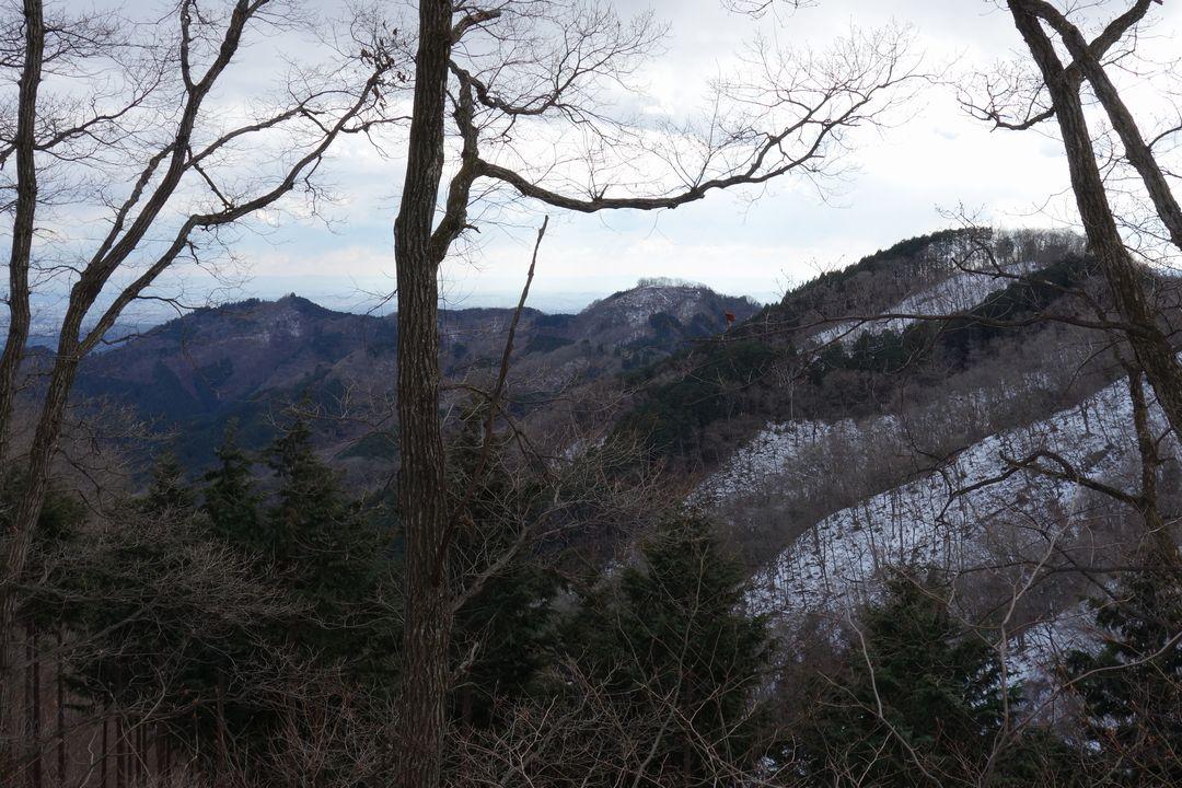 170114棒ノ折山_041