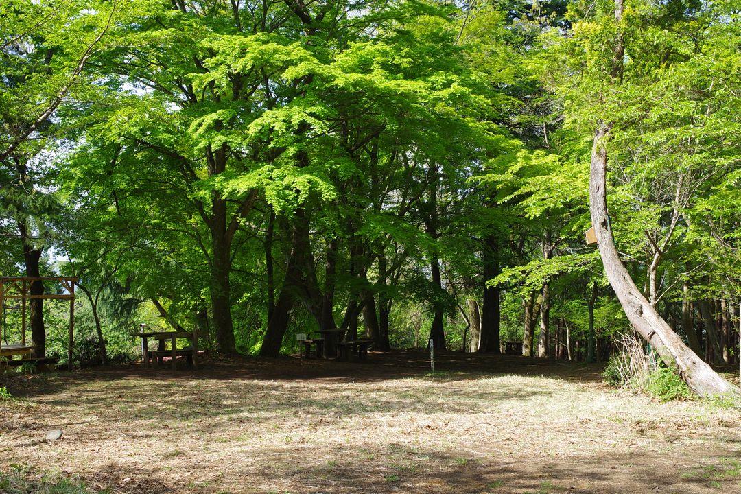 大倉高原の家 キャンプ指定地