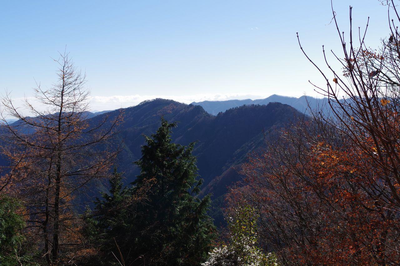 武甲山から見た小持山と大持山