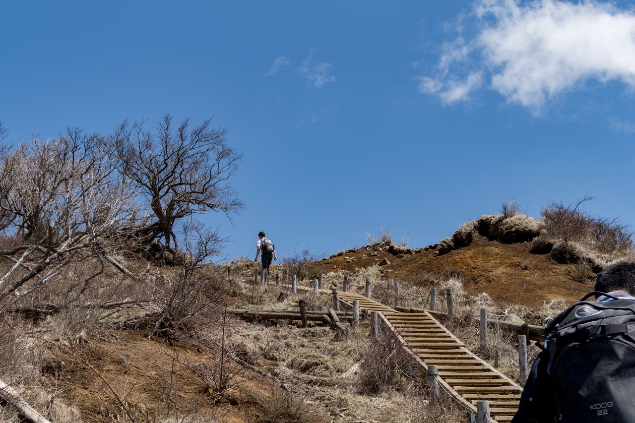 塔ノ岳 山頂直下の階段
