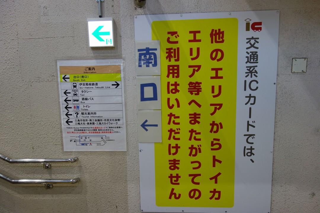 190104達磨山_008