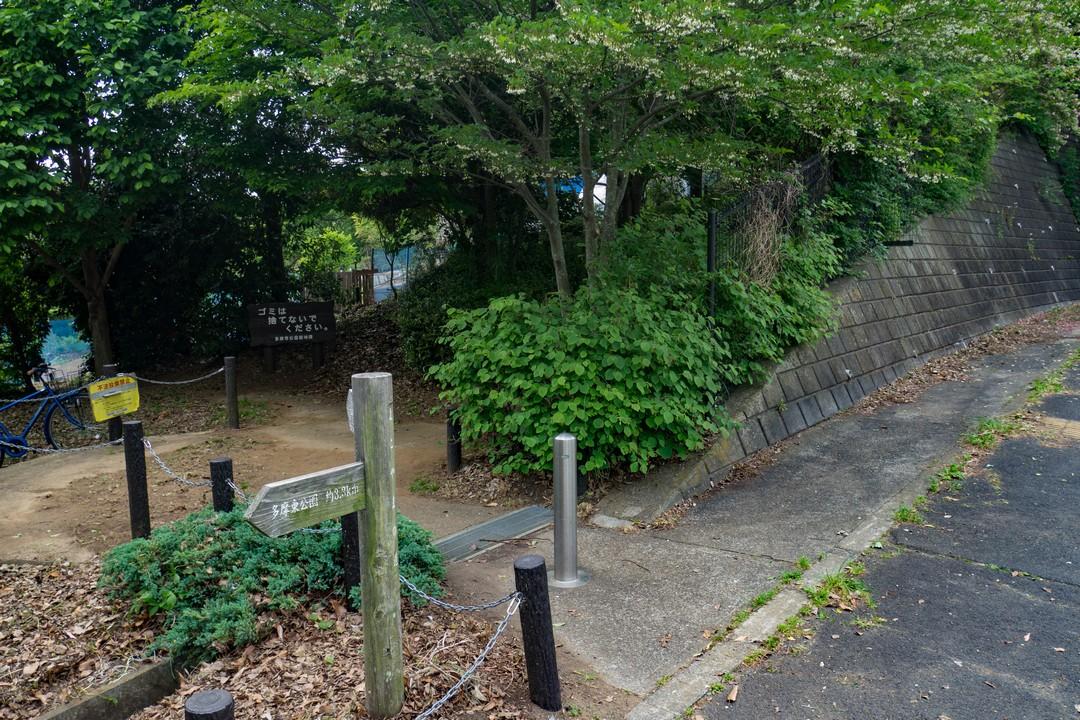 多摩よこやまの道の光景