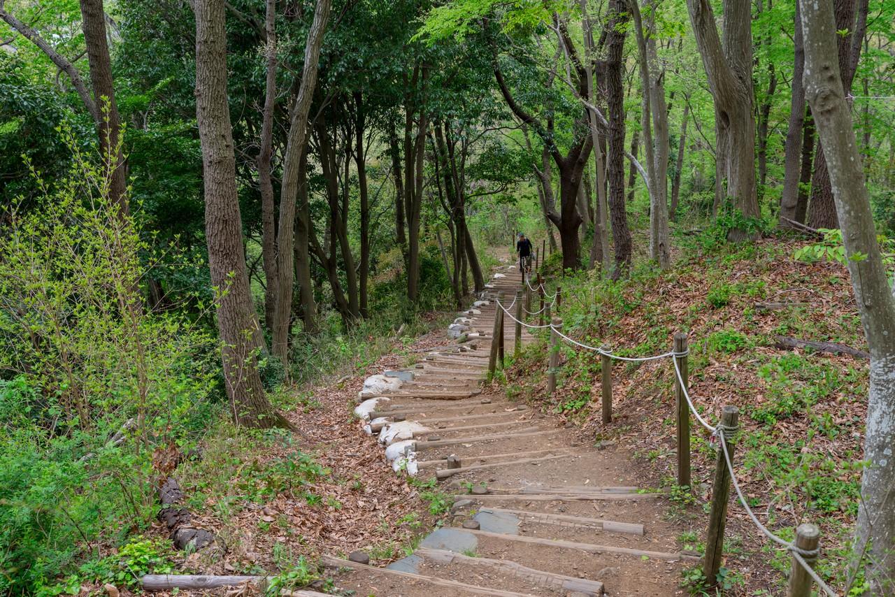 200405高取山_104
