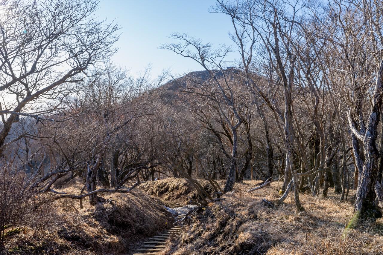 200223塔ノ岳_073
