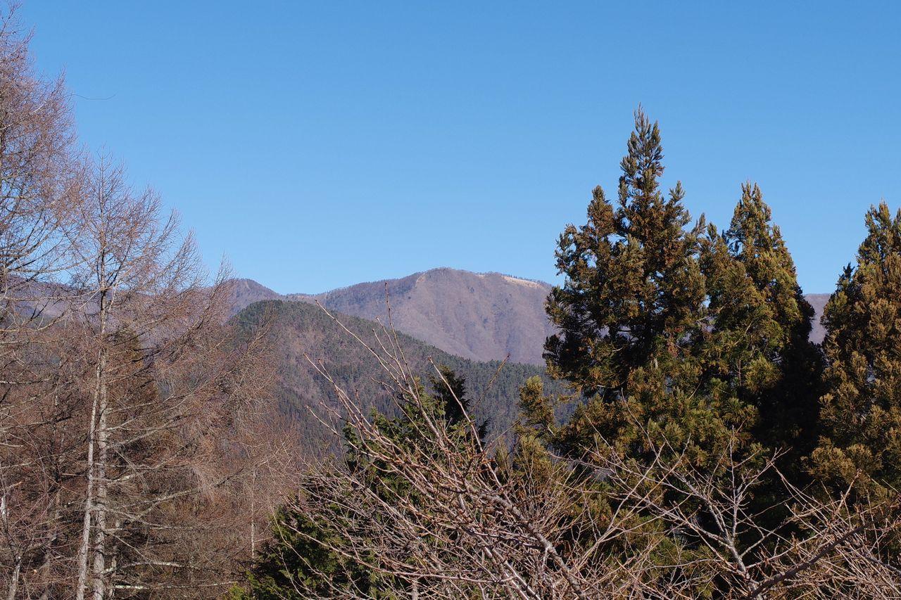 大寺山山頂から見た鷹ノ巣山