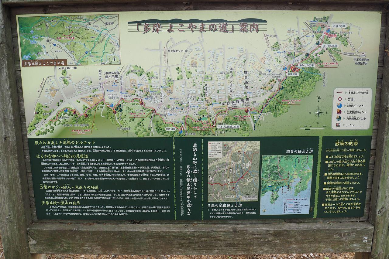 多摩よこやま道の案内板