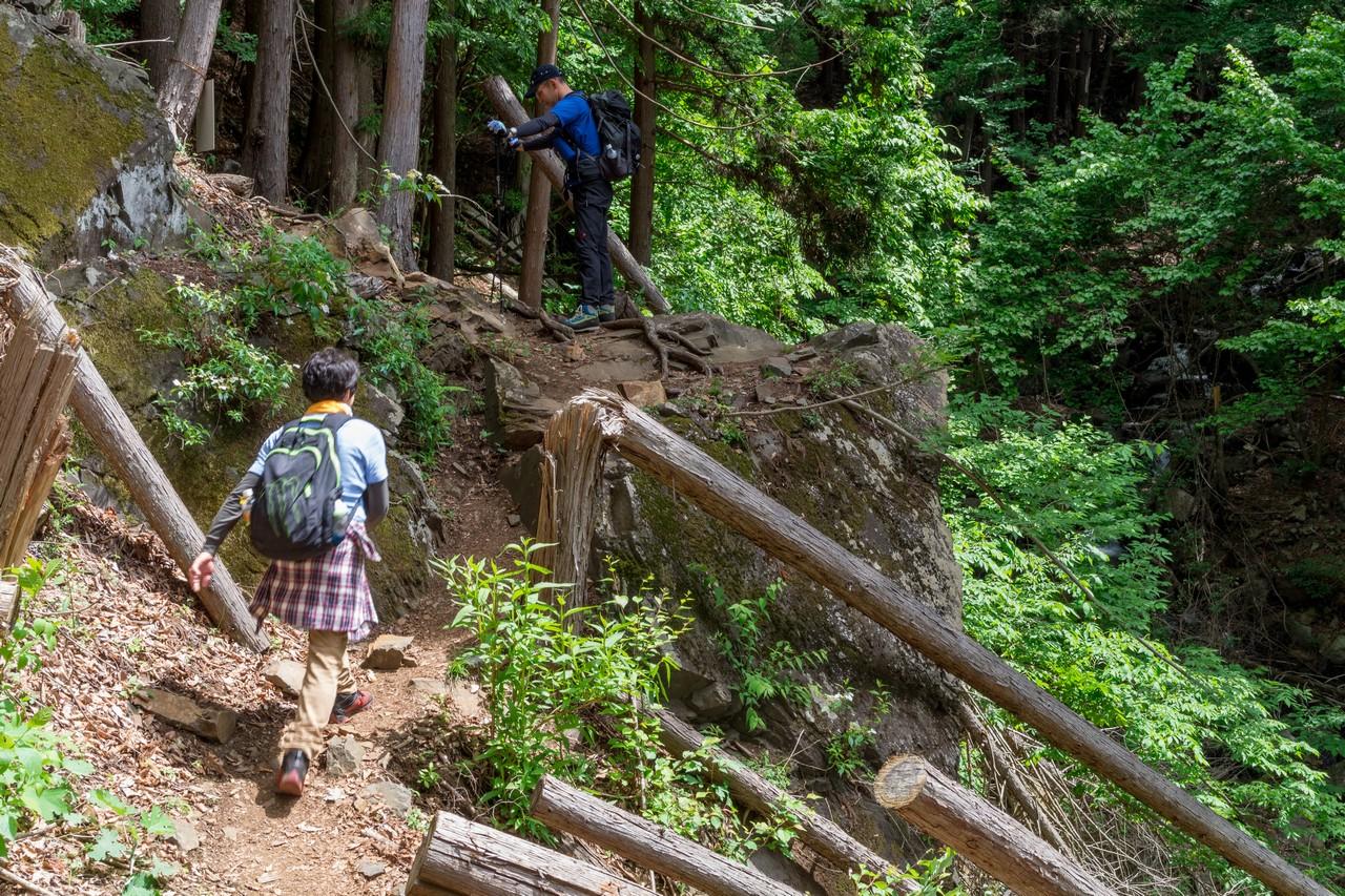 170603滝子山_022