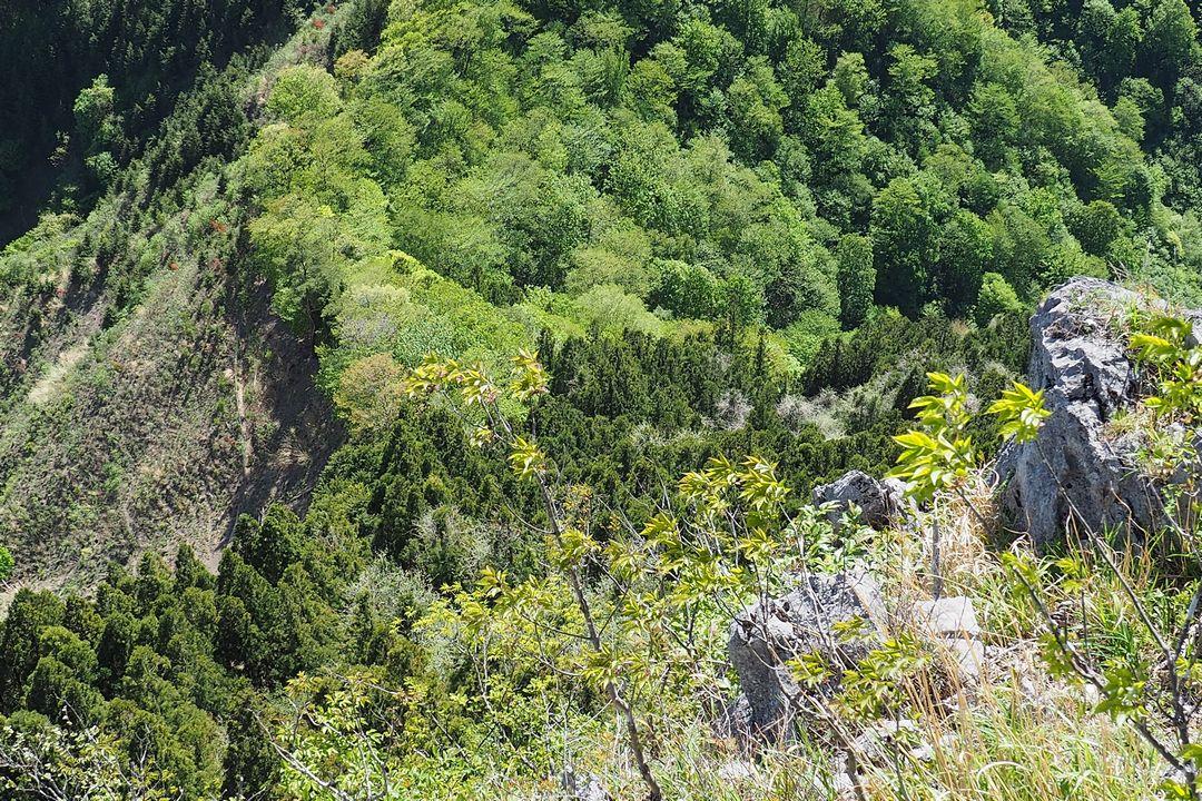 二子山 岩尾根から見た魚尾道峠