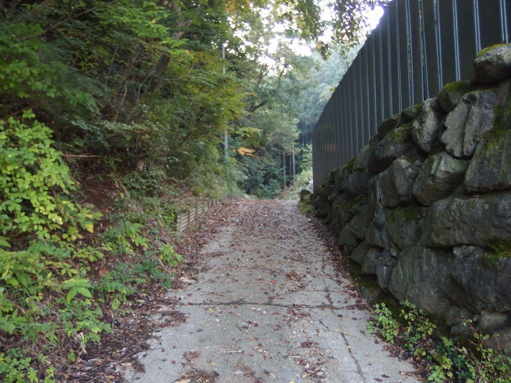 蛭ヶ岳 平丸の登山口