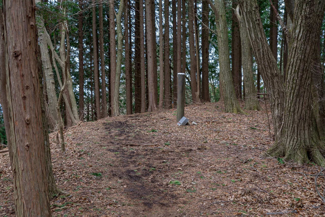 200215丸山_068