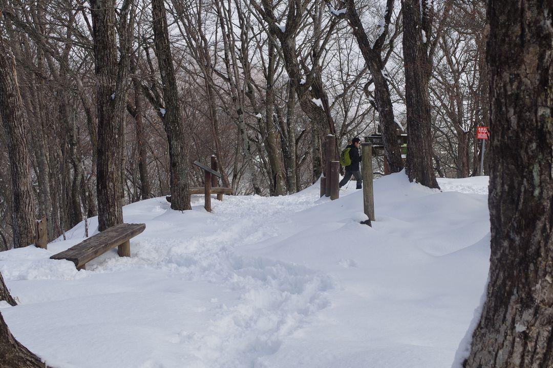 積雪時の三頭山山頂の様子