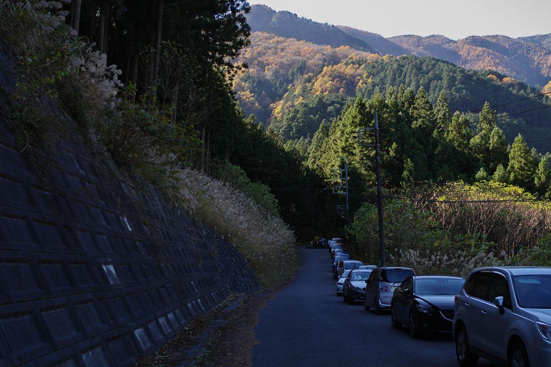 171114武甲山_027