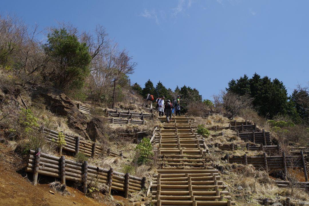 大倉尾根 花立の階段