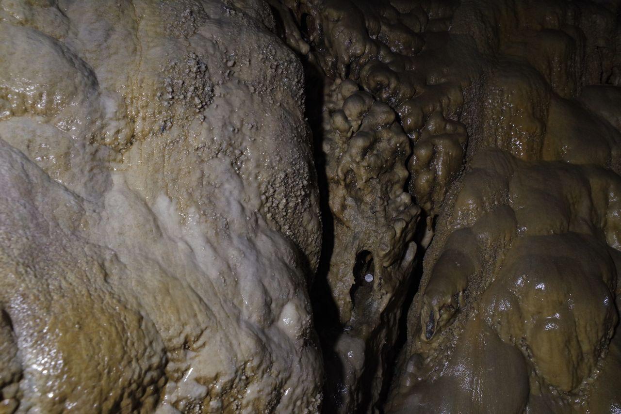 大岳鍾乳洞の鍾乳石