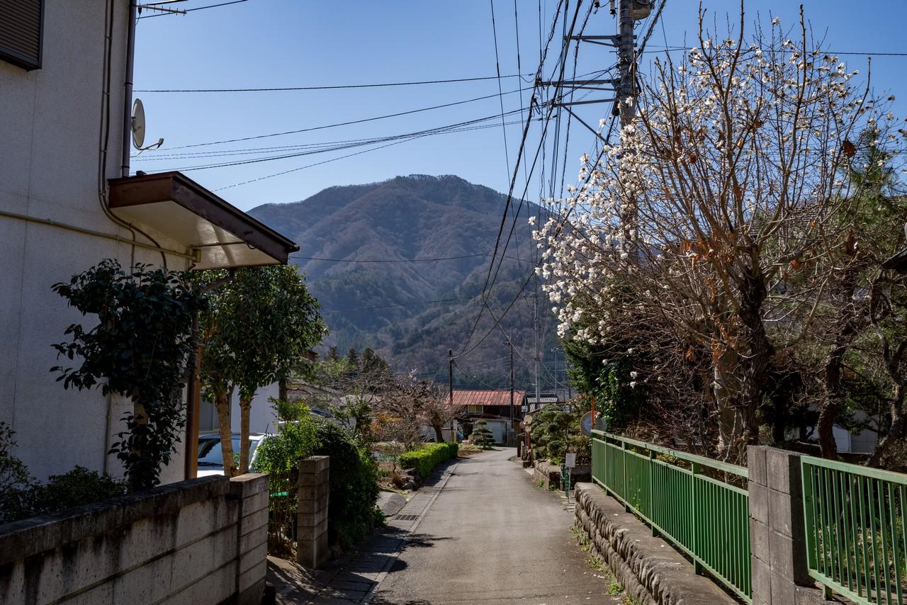 190324倉岳山_016