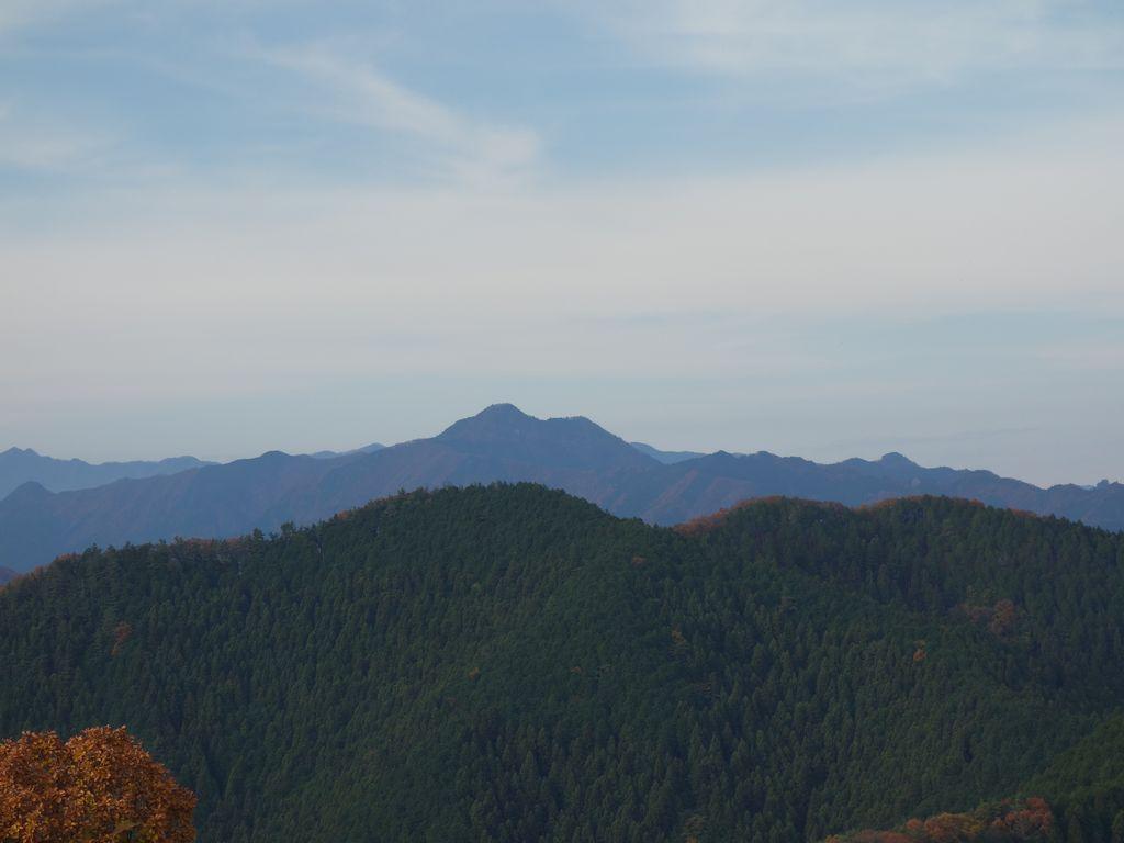 陣馬山から見た大岳山