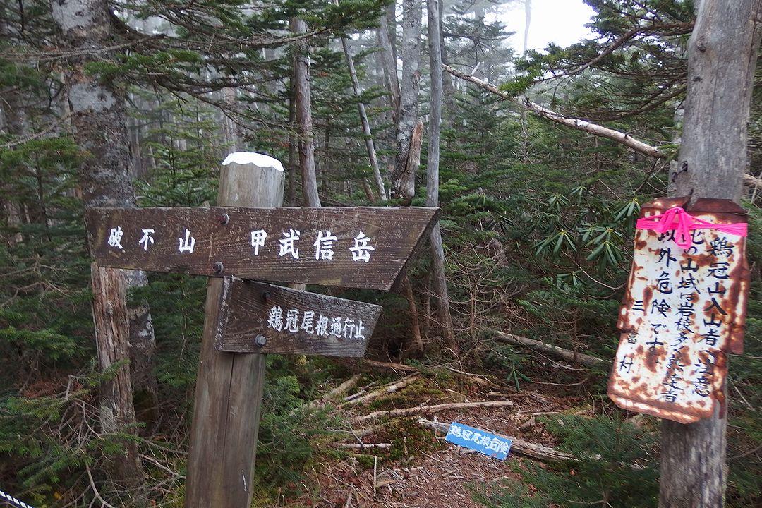 甲武信ヶ岳 鶏冠山方面への分岐