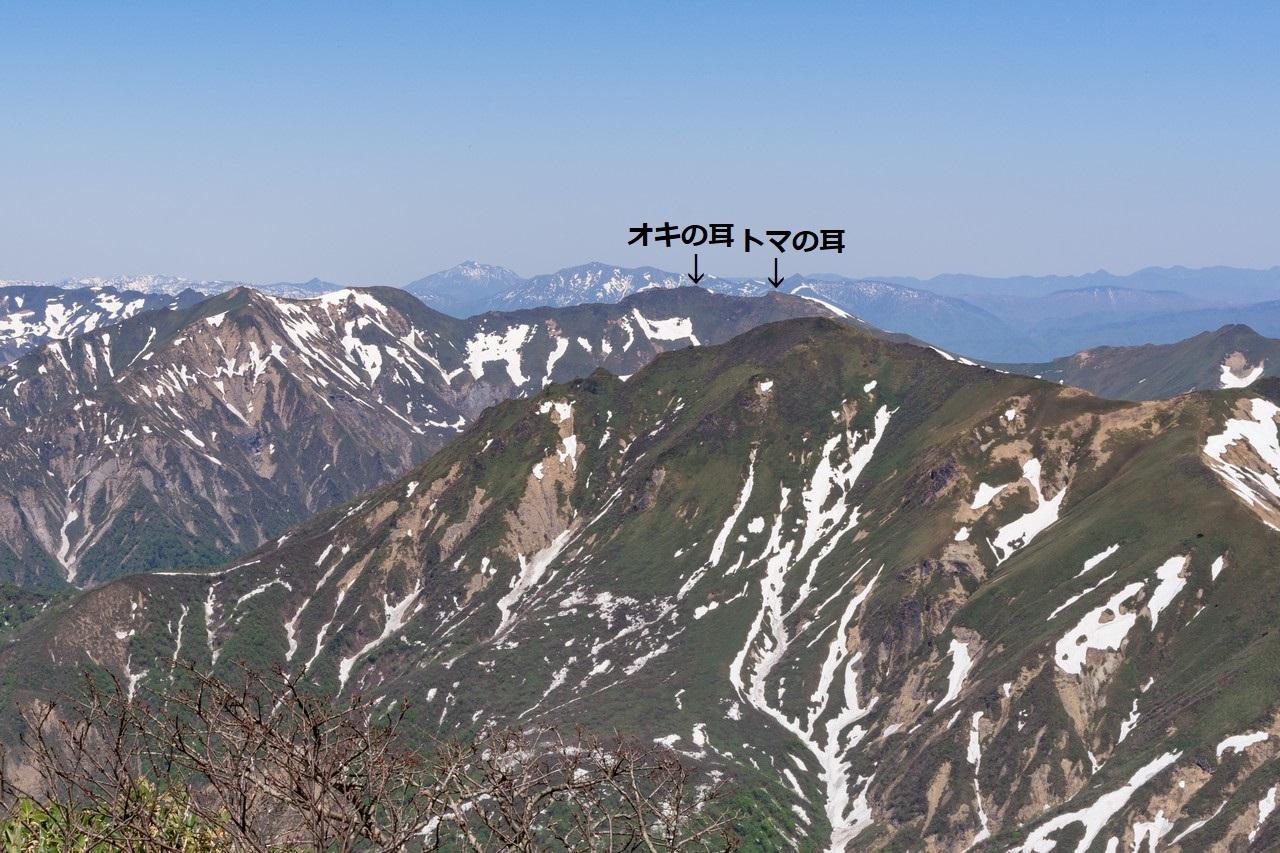 190525仙ノ倉山_070