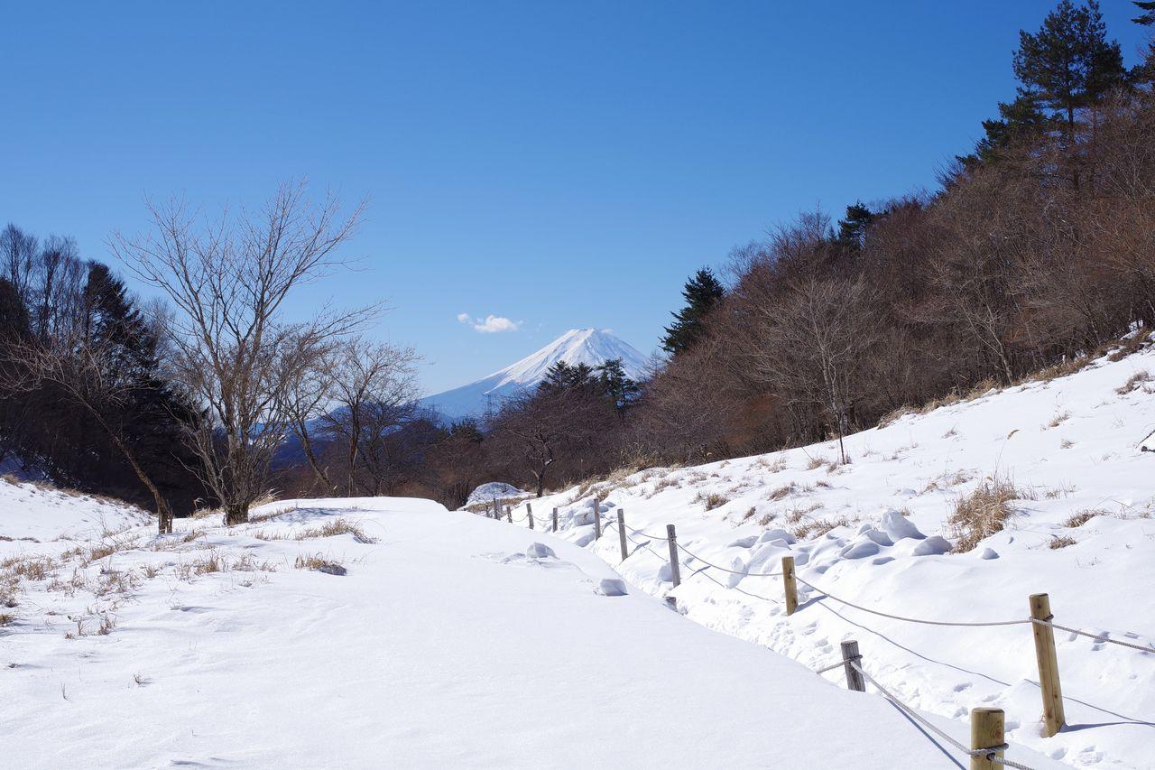 丸川峠から見た富士山