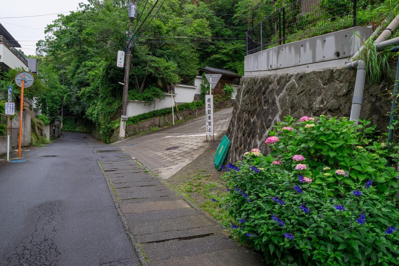 190609鎌倉アルプス_045