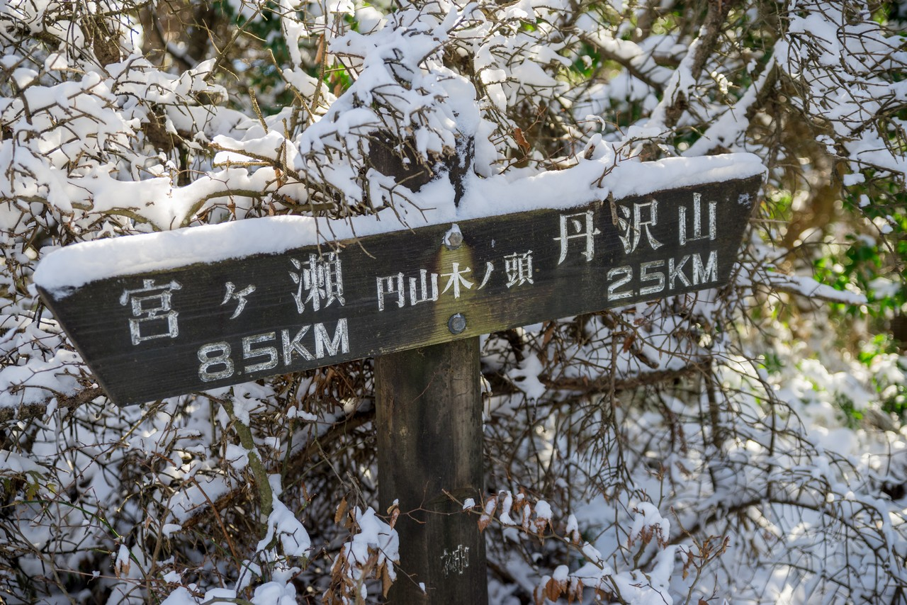 191130丹沢山_067