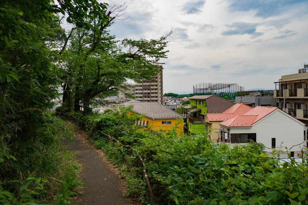 多摩よこやま道の沿道風景