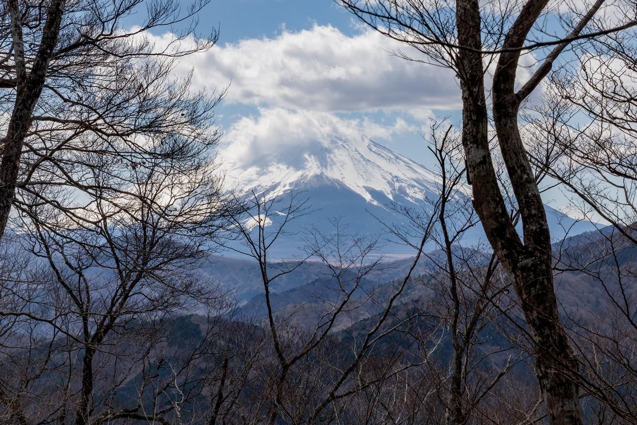 190331ミツバ岳_060