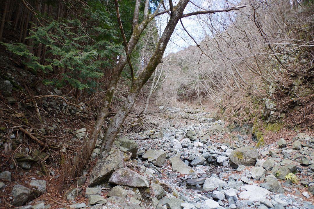 鍋割山 雨山峠コースの風景