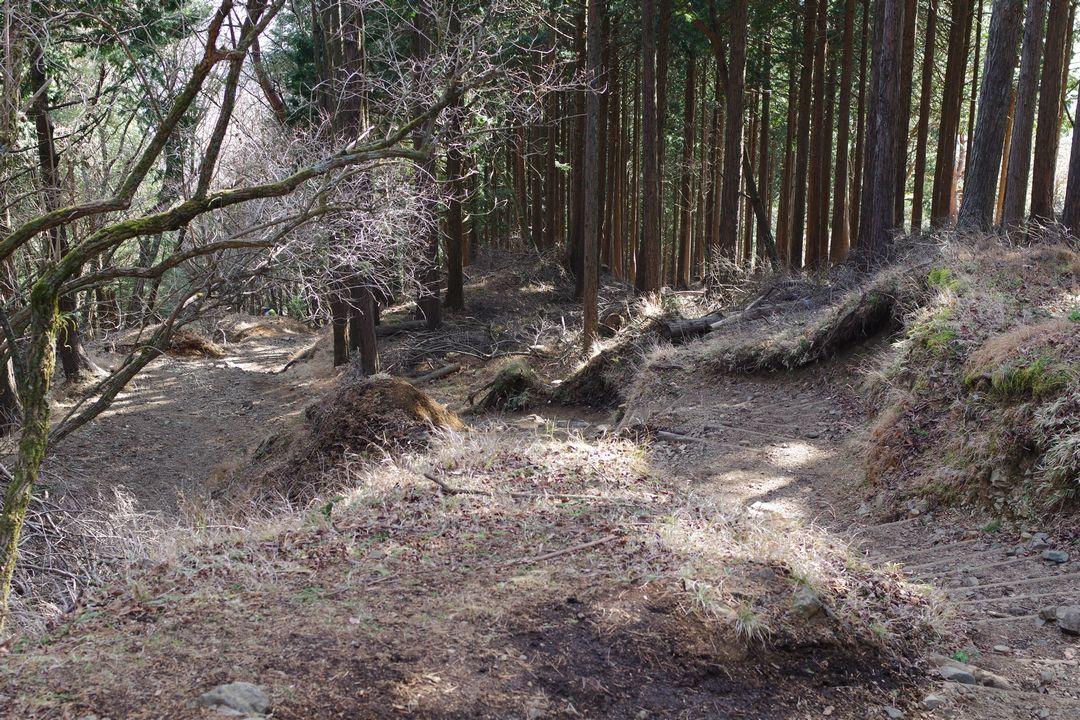 171230蛭ヶ岳_073
