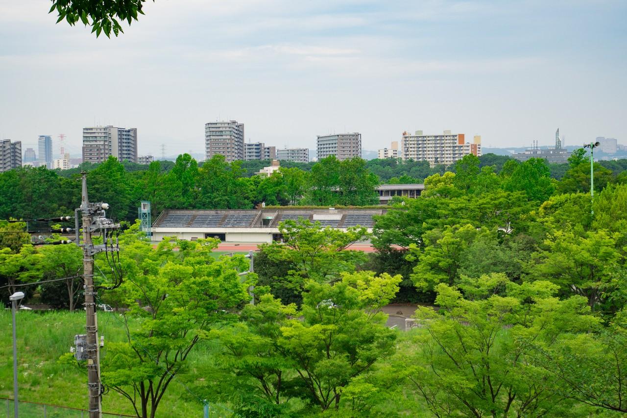 多摩東公園のサッカー場