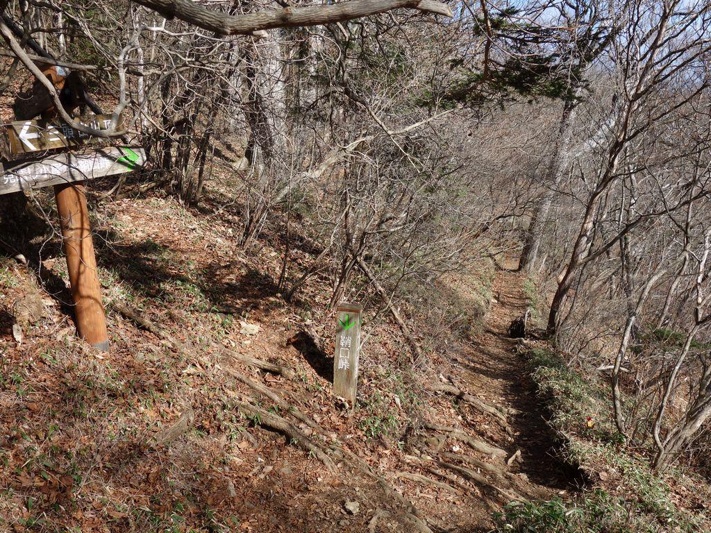 三頭山 鞘口峠方面の下山路