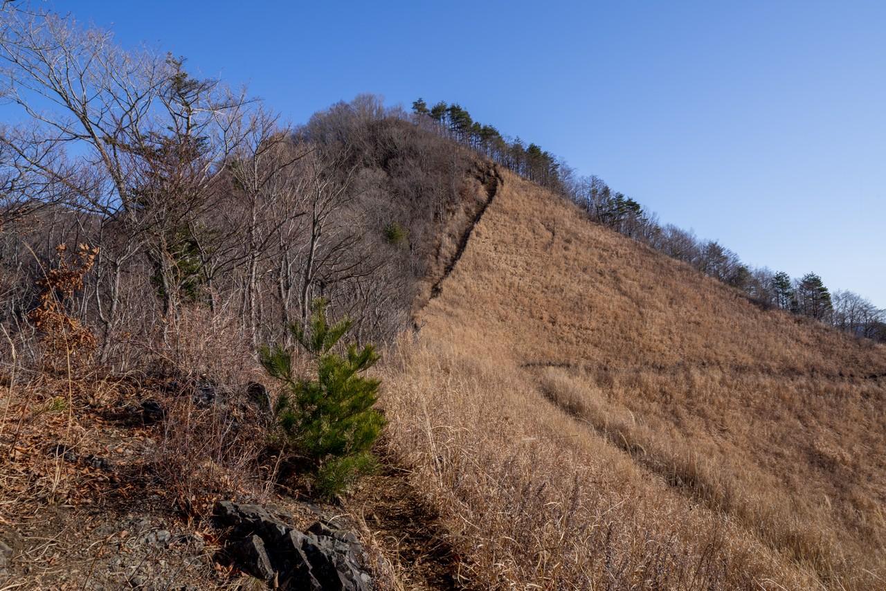 200103杓子山_030