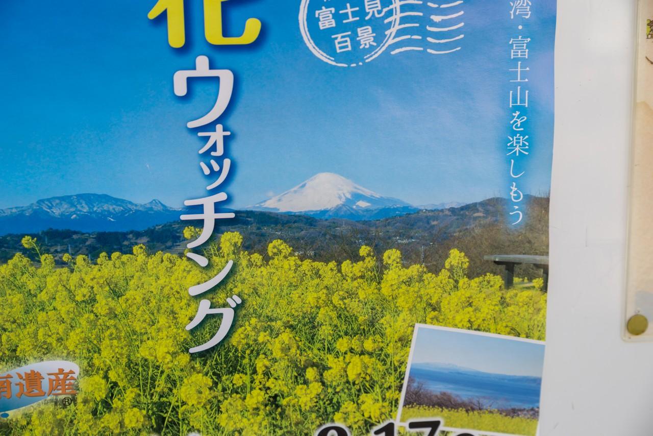 200208吾妻山_035