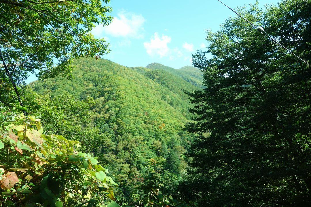 中房温泉へ向かう山道