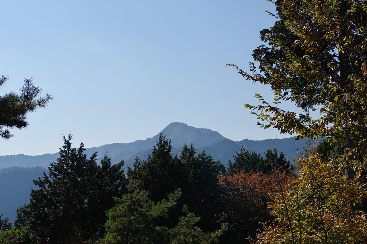 日の出山から見た大岳山