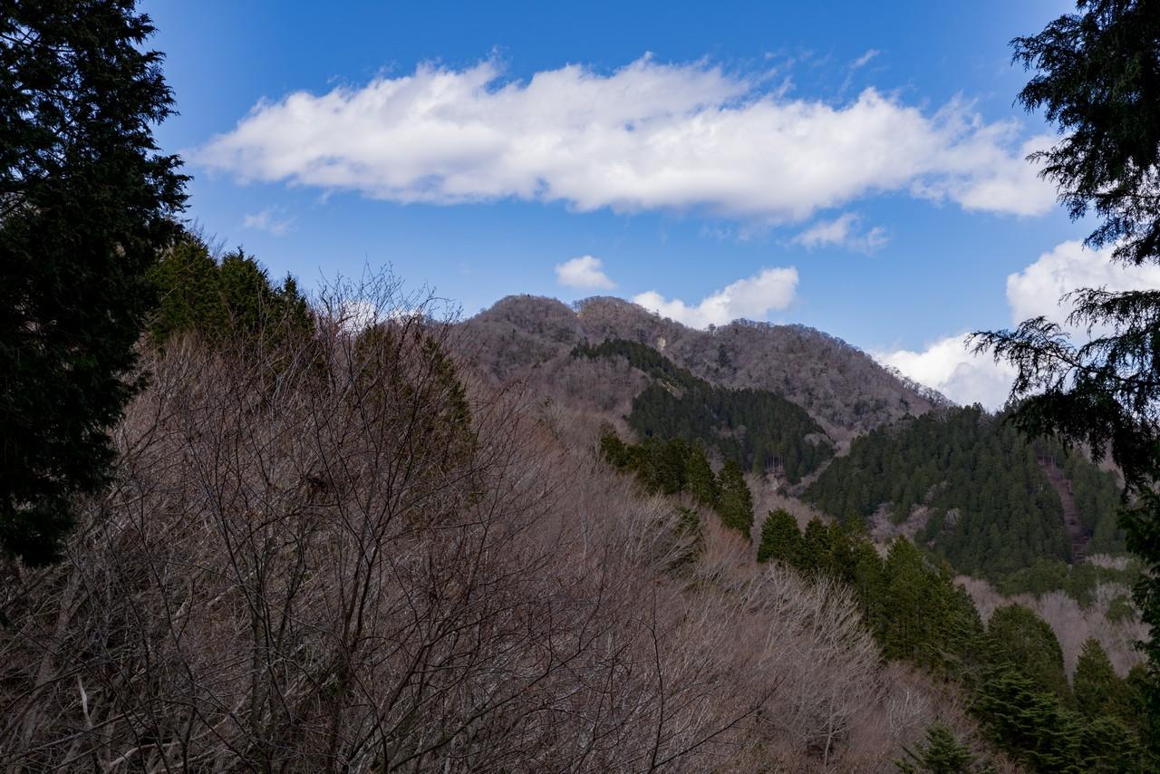 190331ミツバ岳_064