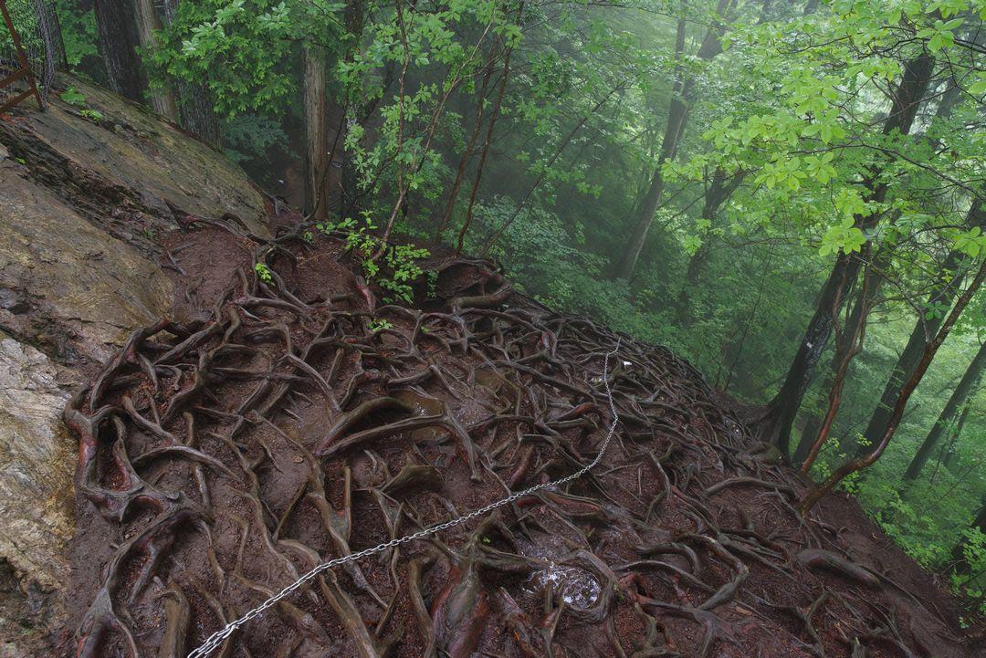 御岳山 天狗岩の上部