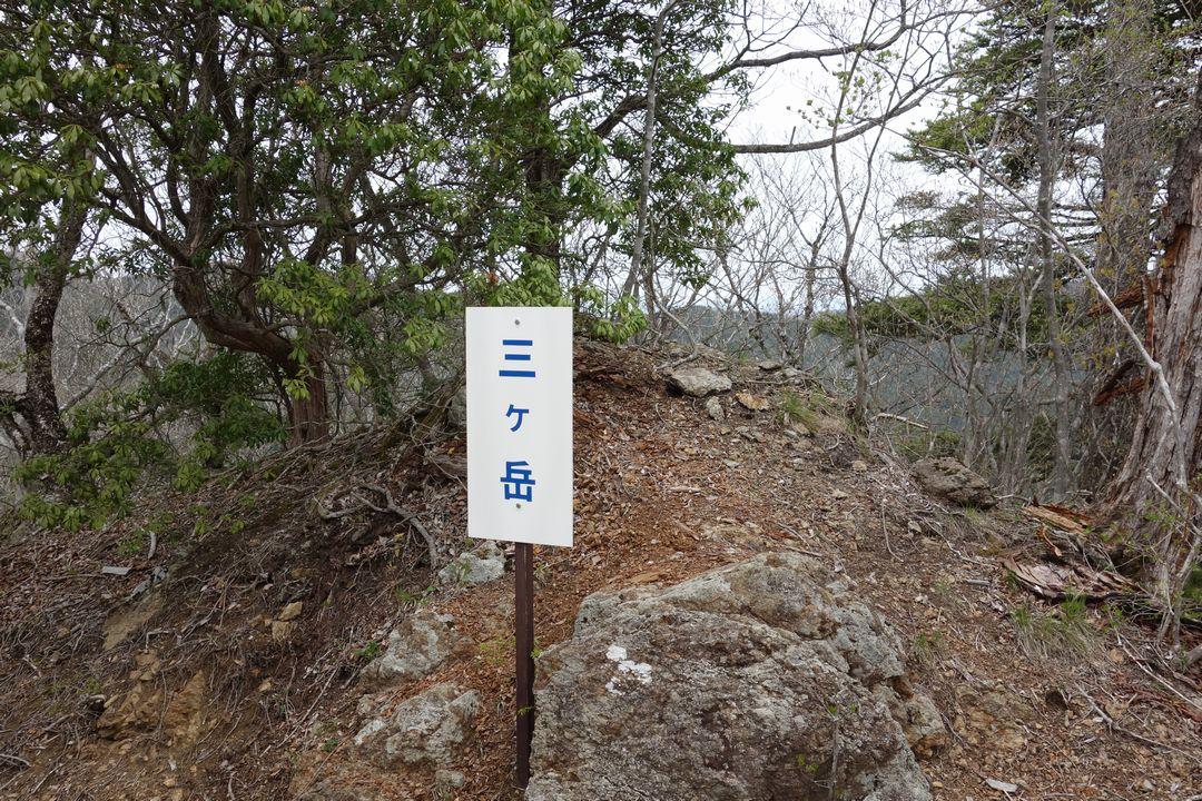 160503十二ヶ岳_019