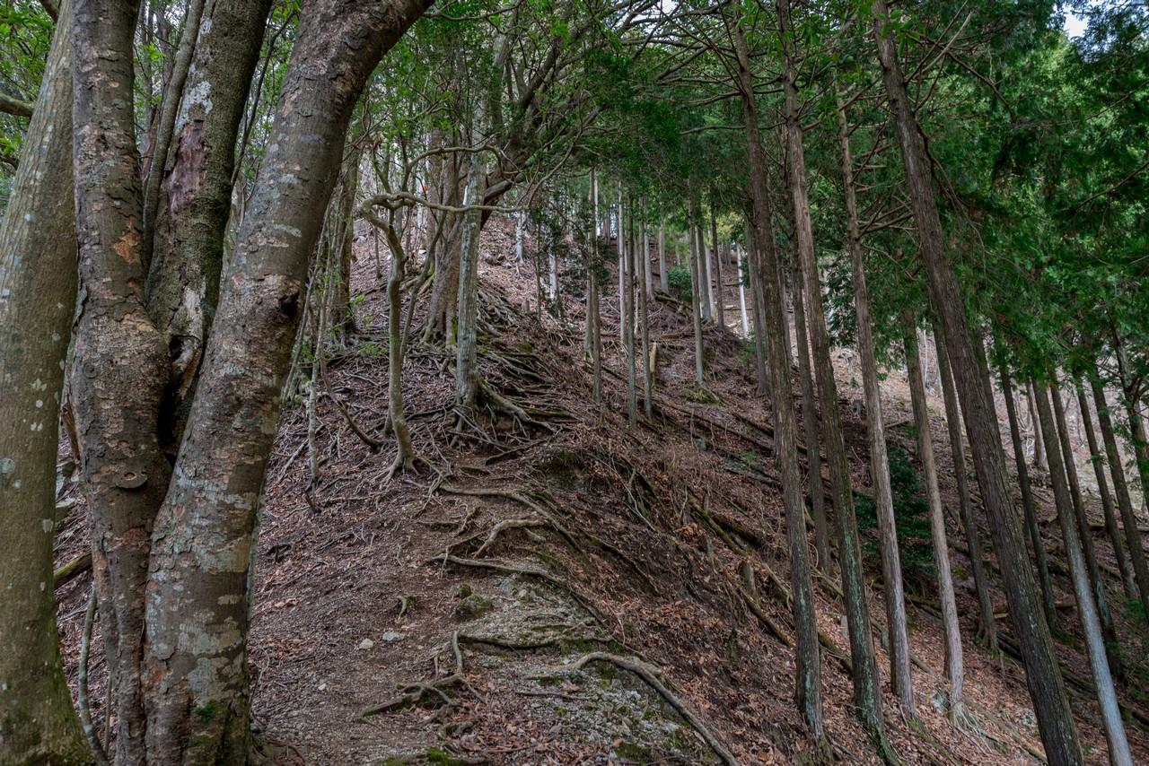 190331ミツバ岳_051