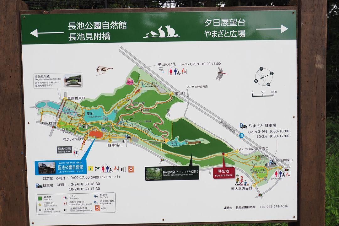 長池公園の案内図