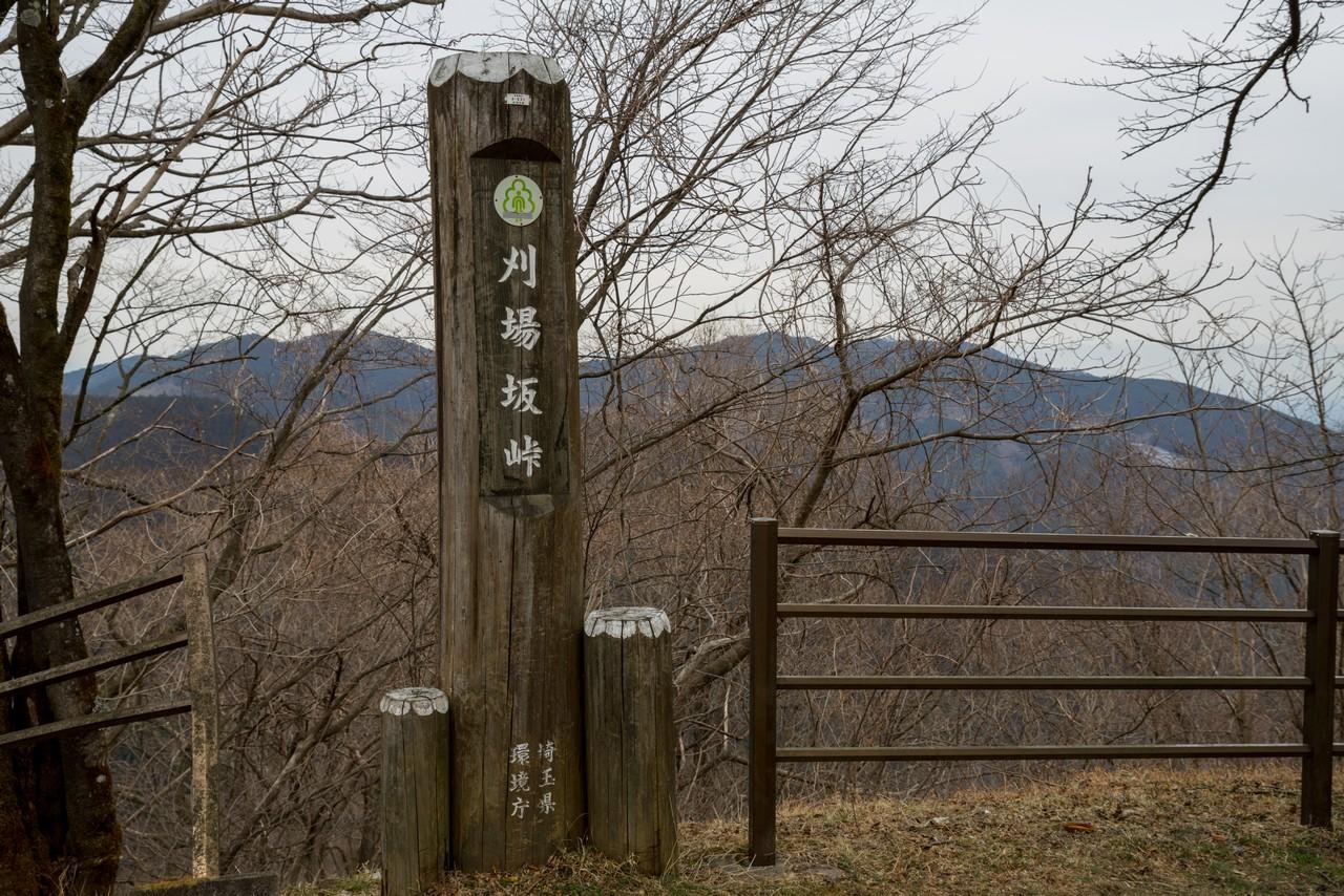 200215丸山_077