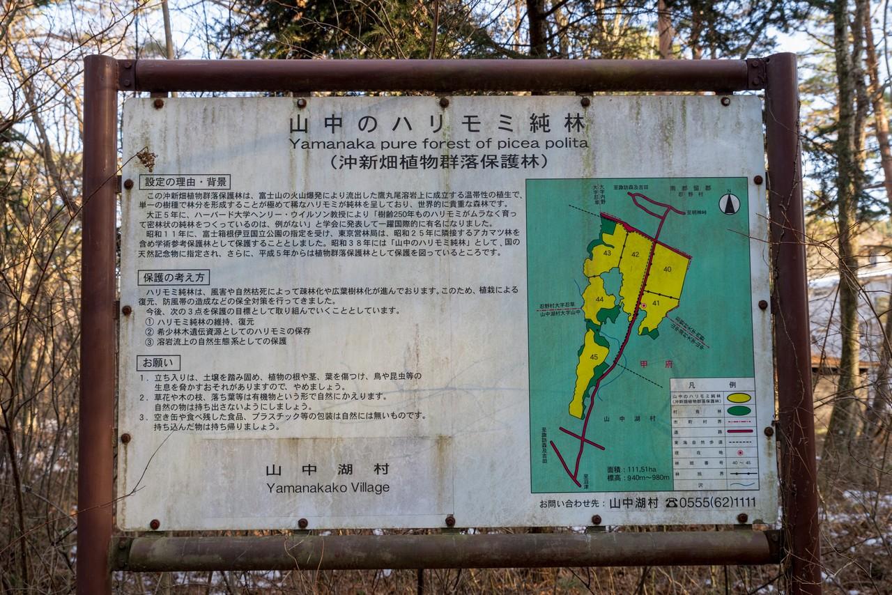 200103杓子山_091