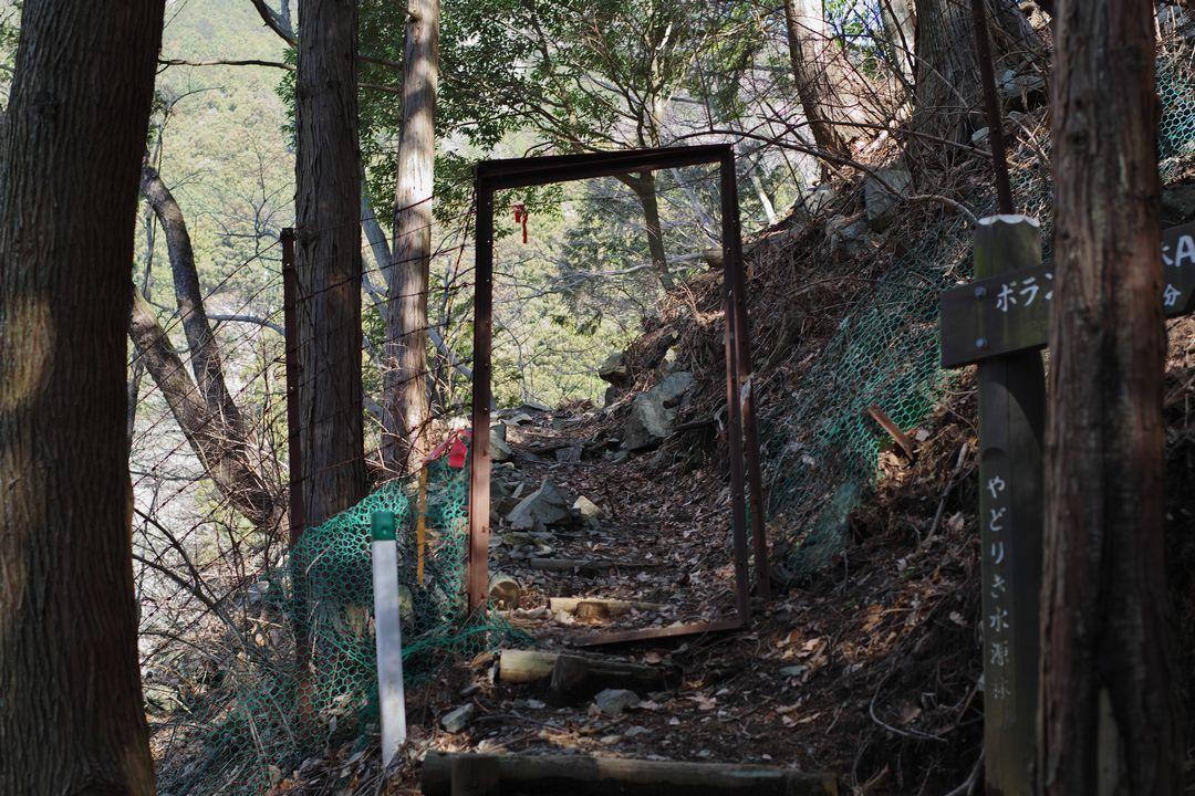 戸の壊れた鹿除けゲート
