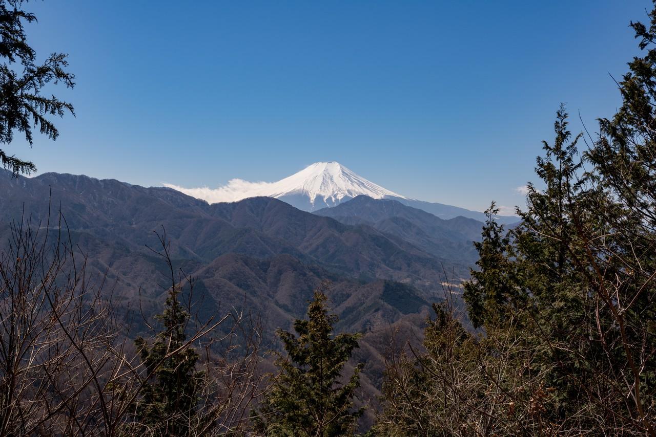 190324倉岳山_042