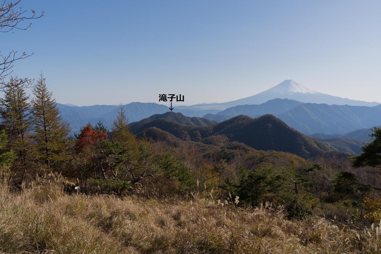 ハマイバ丸から見た滝子山