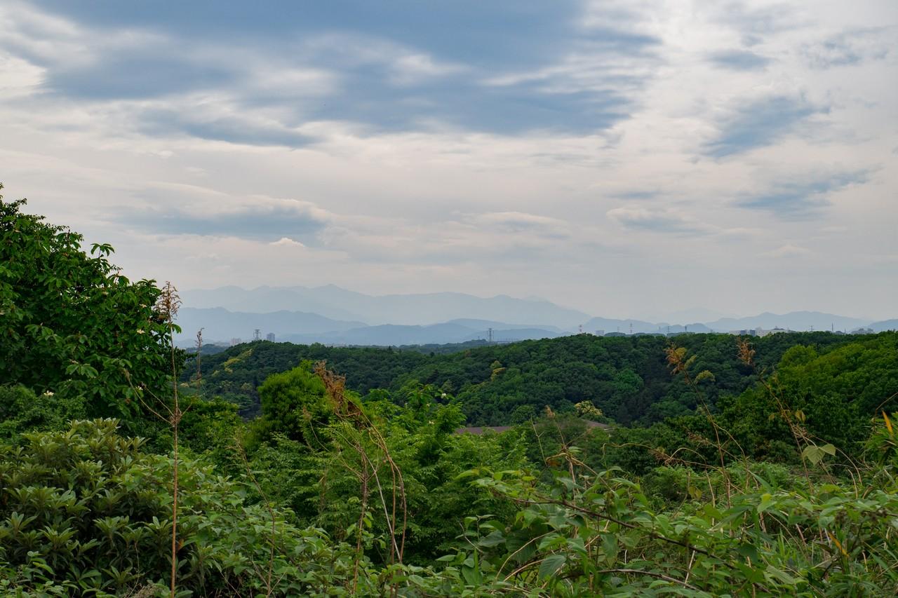 多摩よこやま道から見た多摩丘陵の郊外