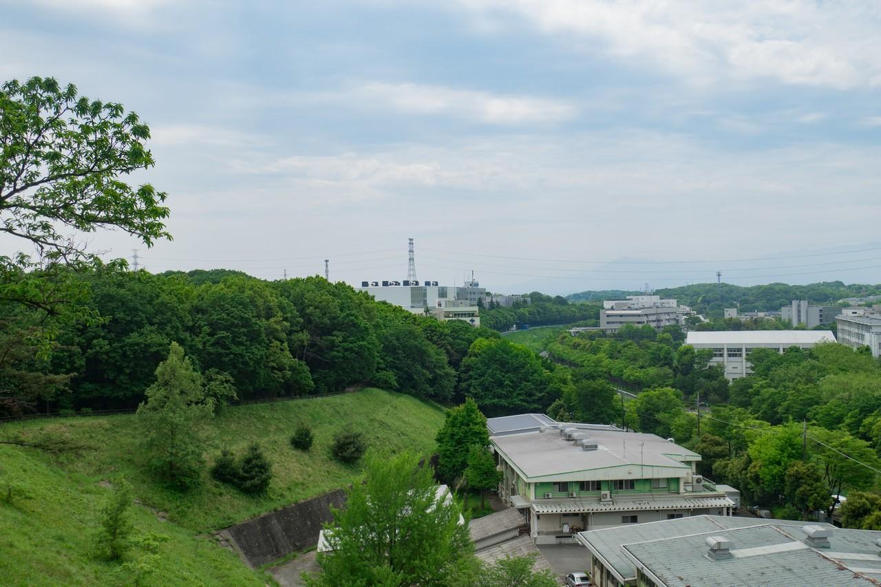 防人見返りの峠から見た多摩よこやまの道