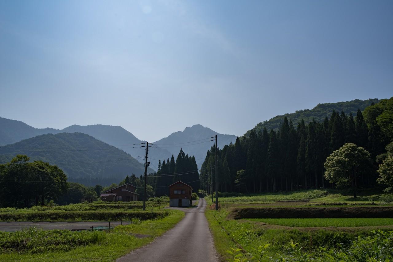 旭原から見た大源太山